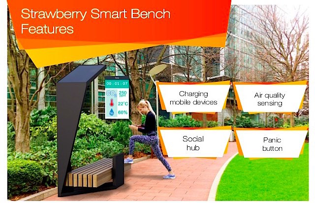Strawberry Smart Bench