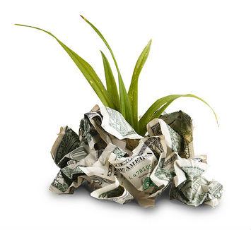 solar money