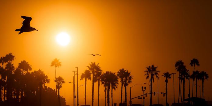solar-rights