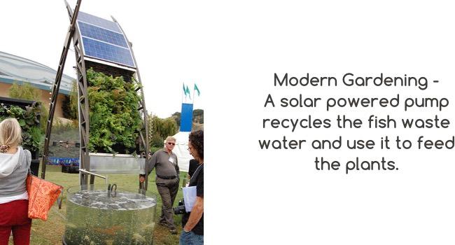 Modern-gardening