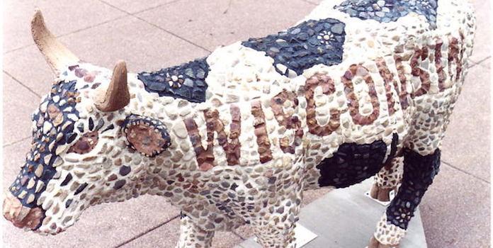 wisconsin-cow